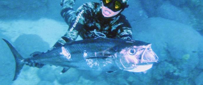 Speerfischen in Sumba